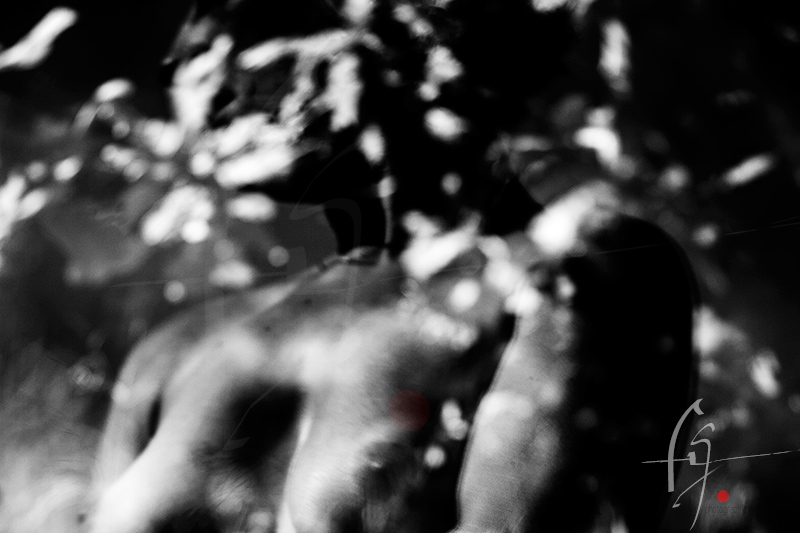 Photographe_de_Nu_16